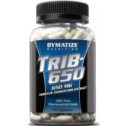 Trib 650